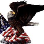 freedom patriotic